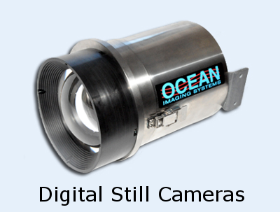 Digital Still Cameras